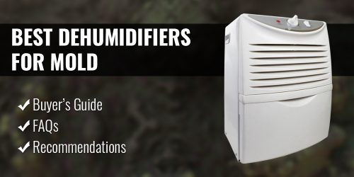 The Best Dehumidifiers for Mold (2020 Reviews & Buyer's Guide)